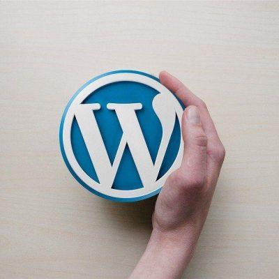 onehundred.digital Wordpress Berlin