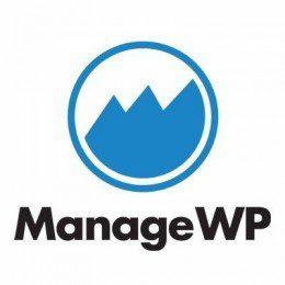 Manage Wordpress Agentur Berlin
