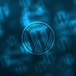 Wordpress Agentur in Berlin